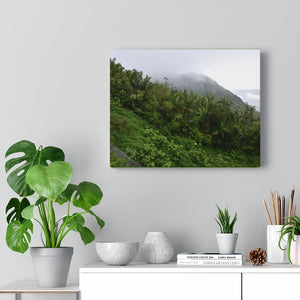 US Made - Canvas Gallery Wraps - Awesome view from PR 143 the top road in PR next to cliff - Toro Negro rainforest at 4,000 feet altitude - Puerto Rico - Yunque Store