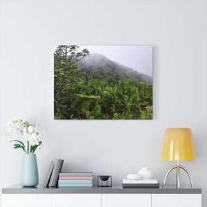 US Made - Canvas Gallery Wraps - Awesome view from PR 143 the top road in PR - Toro Negro rainforest at 4,000 feet altitude - Puerto Rico - Yunque Store