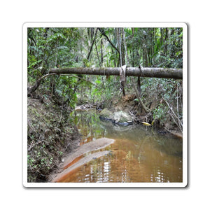 US Made - Magnets - for a Nature@Home - DEEP Forest explorations - Rio Espiritu Santo - El Yunque Rainforest - Puerto Rico - Yunque Store