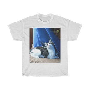 US Print - Gildan 5000 - Unisex Heavy Cotton Tee - Home Baby Cat Dante Dazzled by the curtains and wind - Puerto Rico - Yunque Store