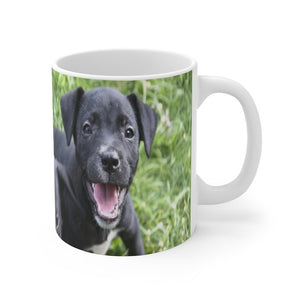 US Print - Mug 11oz - Stray Puppies in Puerto Rico - Yunque Store