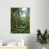 Wooden Framed Poster - View Thru the Sierra Palm forest - 4 day 24Km exploration - Tradewinds WILDERNESS - El Yunque Rainforest PR - Yunque Store