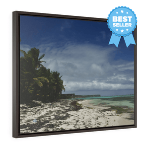 WORDLS WONDER BEACHES: Horizontal Framed Premium Gallery Wrap Canvas -- Remote & Pristine Mona Island near Puerto Rico - Pajaros beach - Nikon D850 camera - US PRINT - Yunque Store