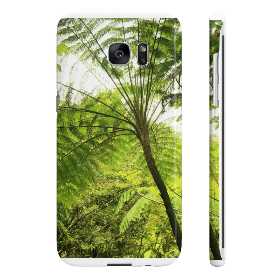 Wpaps Slim Phone Cases - - El Yunque rainforest PR - Fern Palm an ancient tree that once covered the Earth Phone Case Printify