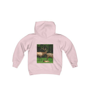Youth Heavy Blend Hooded Sweatshirt - Celebrating the Great Smoky Mountain National Park Kids clothes Printify