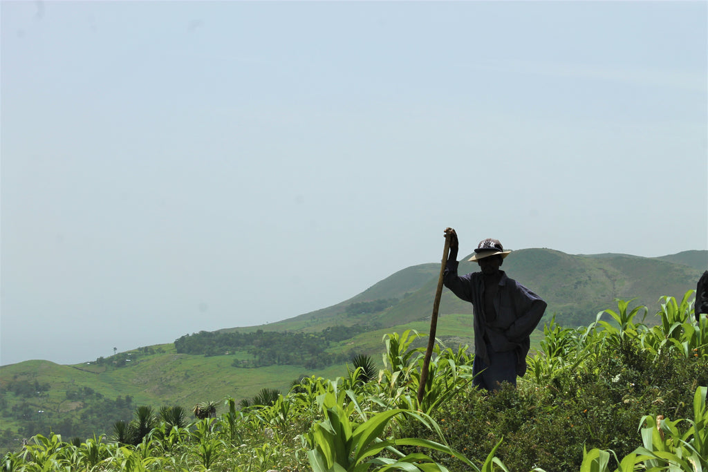 Haitian Farmer with Pickaxe