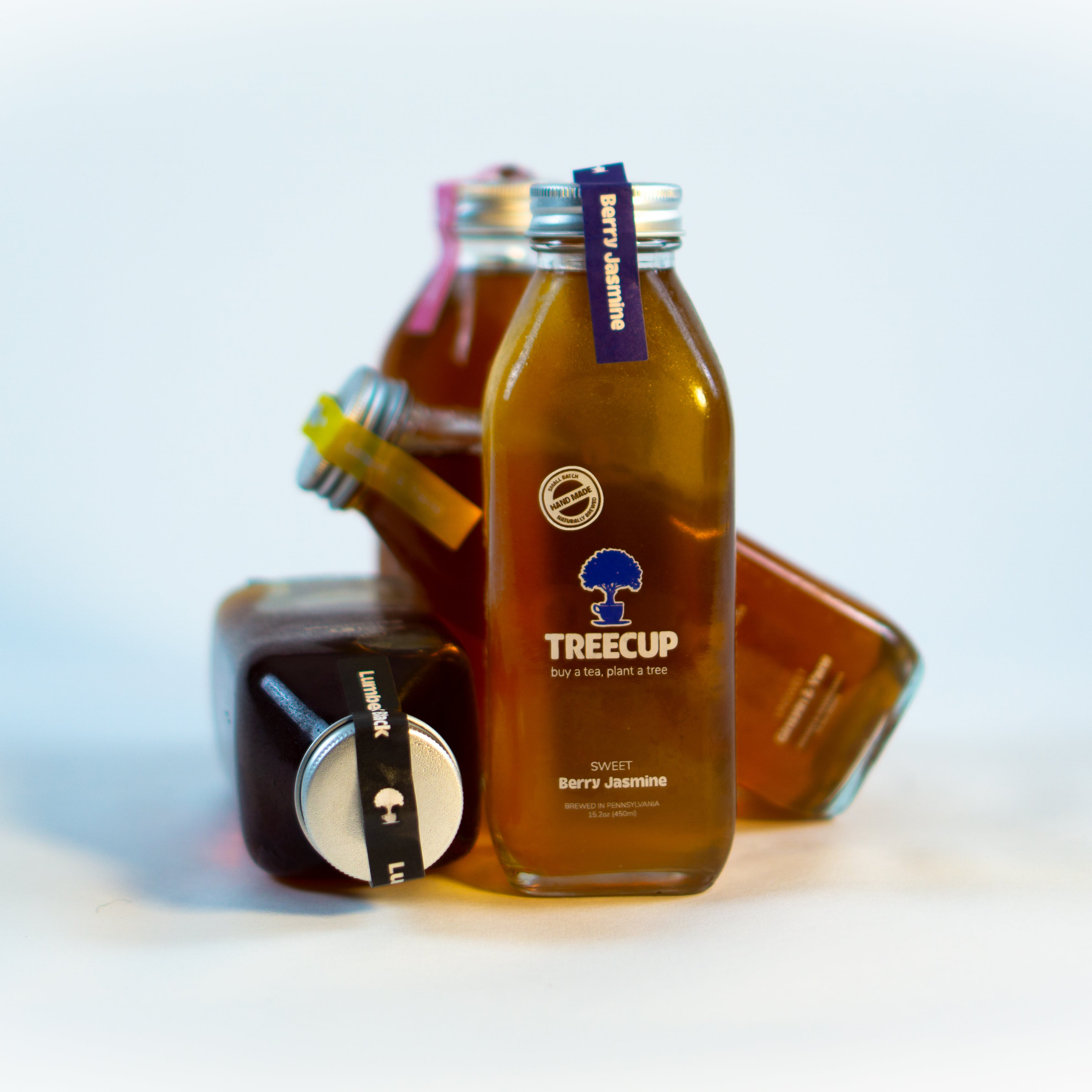 TREECUP ORGANIC ICED TEA 12-PACK