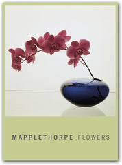Mapplethorpe Flowers Boxed Notecards
