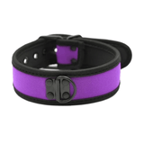 Kitty's Two-Tone Bondage Collar