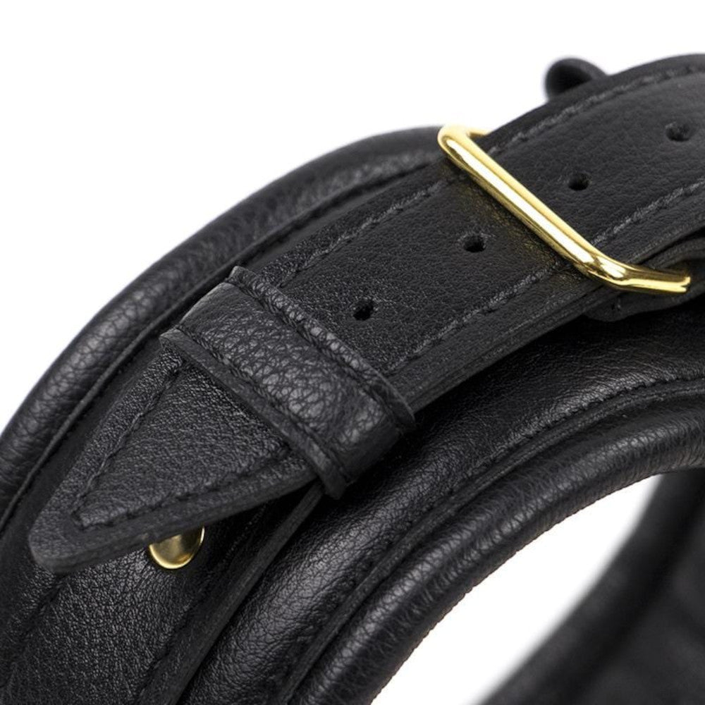Royal Treatment Leather Collar With Gold Leash