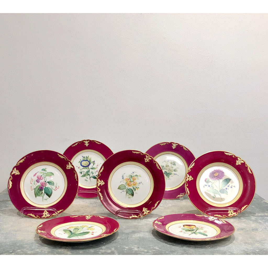 Set of 7 Copeland Botanical Plates, England circa 1820