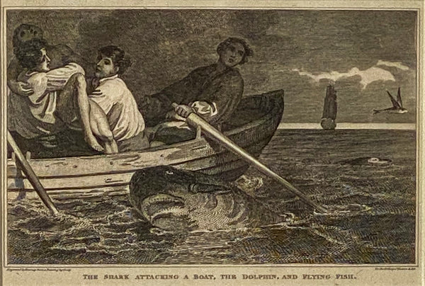 """Shark Attack"" Engraving England Circa 1820"