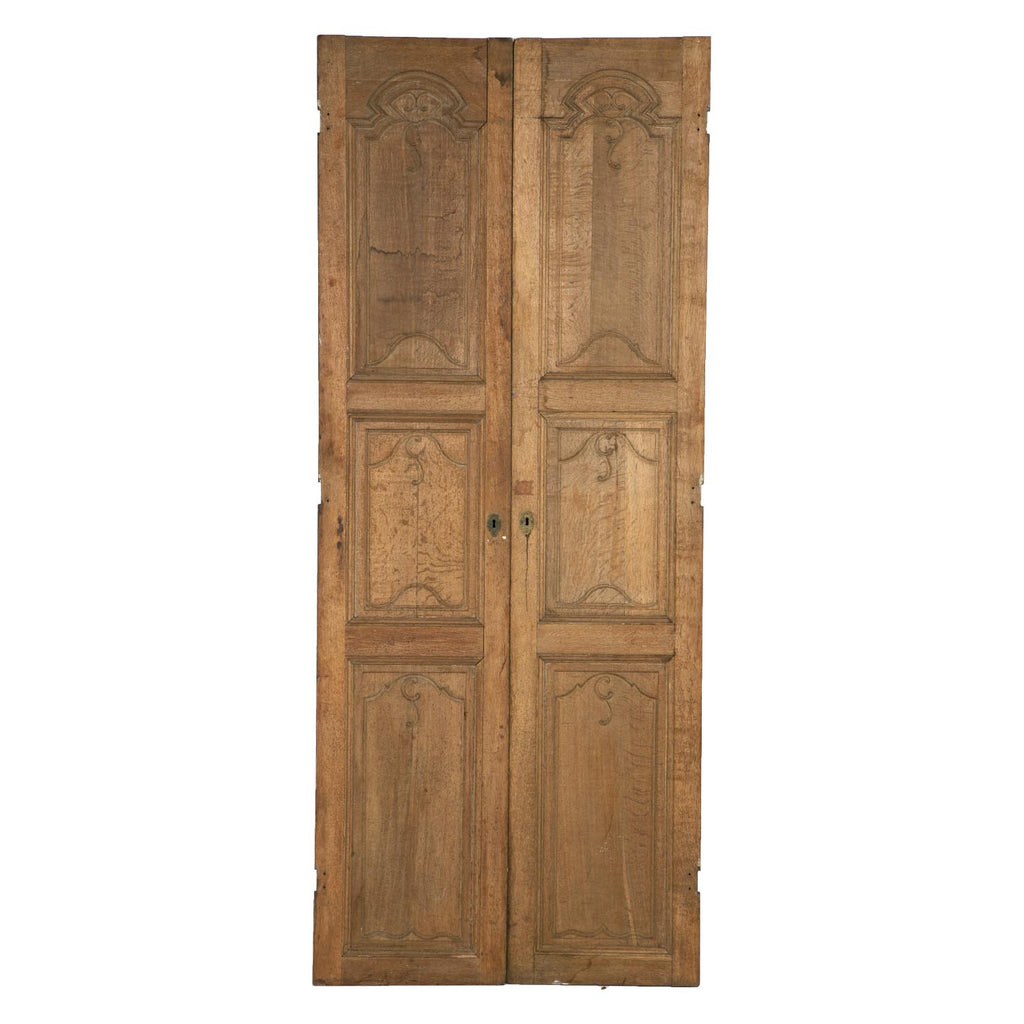 Pair of 19th century Large French Doors