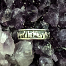 Load image into Gallery viewer, Llama Herd Line Eternity Band