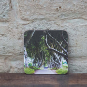 dark hedges coaster