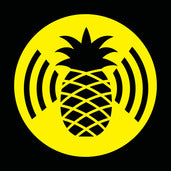 WiFi Pineapple Sticker