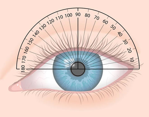 Meridians of the eye are determined by superimposing a protractor scale on the eye's front surface. The 90-degree meridian is the vertical meridian of the eye, and the 180-degree meridian is the horizontal meridian.