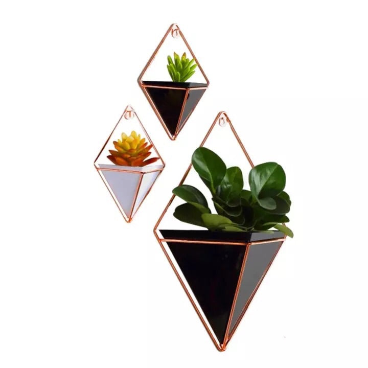 Geometric Succulent Wall Planter