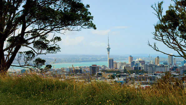 Auckland and Wellington Run