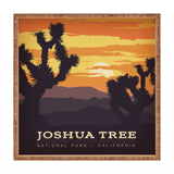 Anderson Design Group Joshua Tree Square Tray