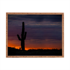 Barbara Sherman Saguaro Sunset Rectangular Tray