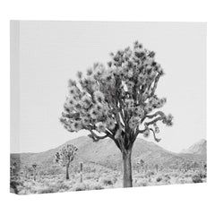 Bree Madden The Desert Art Canvas
