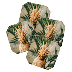 Chelsea Victoria Golden Pineapple in Paradise Coaster Set