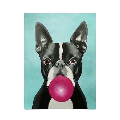 Coco de Paris Boston Terrier blowing bubblegum Poster