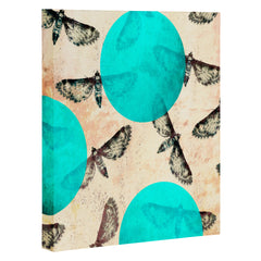 Elisabeth Fredriksson Moths Art Canvas