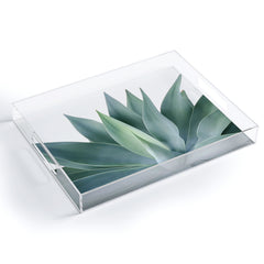 Gale Switzer Agave Blanco Acrylic Tray