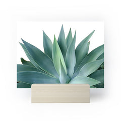 Gale Switzer Agave Blanco Mini Art Print