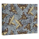 Sharon Turner Deaths head hawkmoth twilight Art Canvas