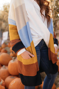 Many Colors Striped Cardigan - M & H