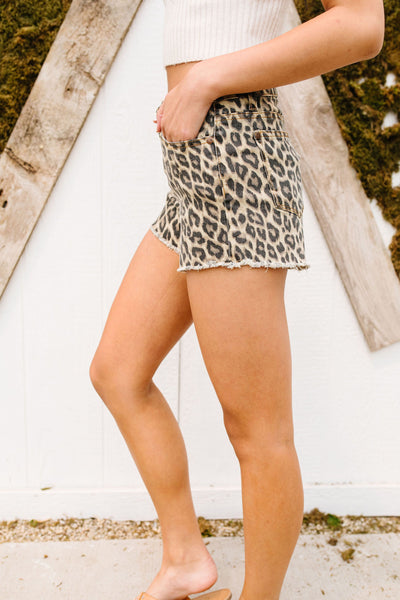 Summer Nights Leopard Print Shorts - M & H