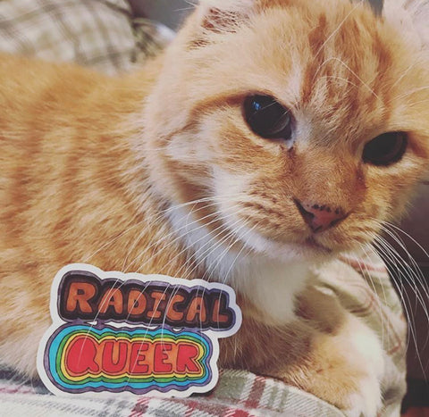 Radical Queer Sticker