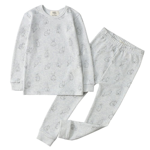 100% Organic Cotton Toddler 2 Piece Pajama Set - Grey Rabbits