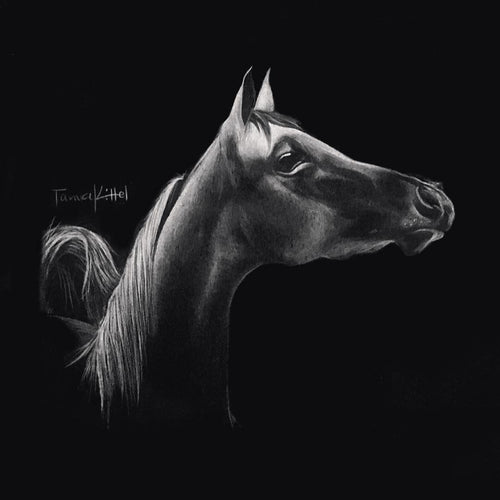 """Pride"" - A4 framed original horse portrait"