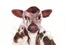 "Load image into Gallery viewer, ""Calf"" - Giclée print"