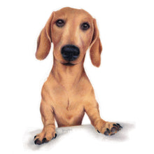 "Load image into Gallery viewer, ""Dashchund"" - Giclée print"