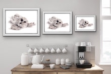 "Load image into Gallery viewer, ""White & Fluffy"" - Giclée print"