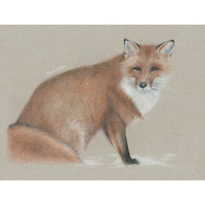 """Winter fox"" - Giclée print"