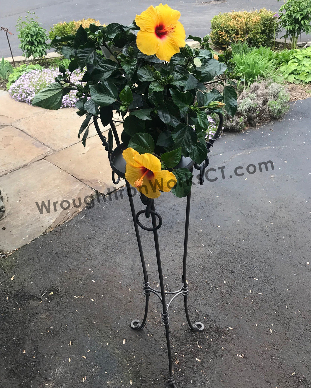 Wrought Iron Single Plant Stand