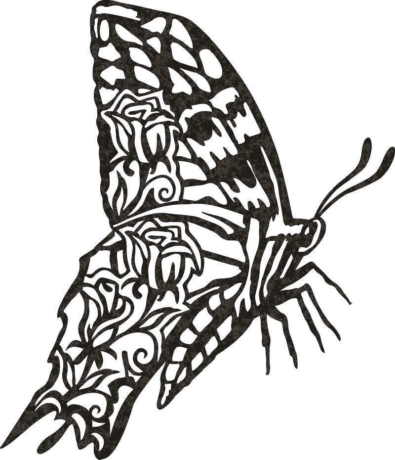 butterfly DXF of PLASMA ROUTER LASER  Cut -CNC Vector DXF-CDR-AI-JPEG