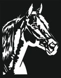 HEAD HORSE SVG-DXF of PLASMA ROUTER LASER  Cut -CNC Vector DXF-CDR-AI-JPEG