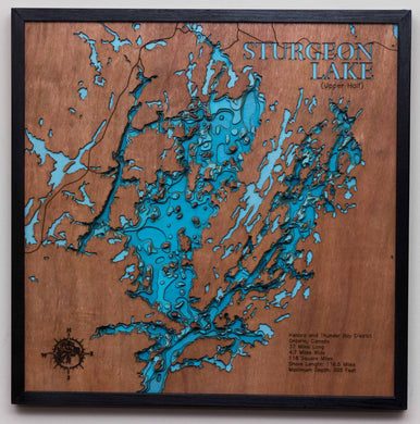 3d Lake Map of Sturgeon Lake in Ontario, Canada