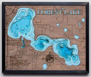 3D Lake Map of Forest Lake in Washington County, MN