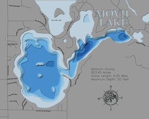 3D Map of Movil Lake in Beltrami County, MN