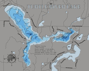 3d Lake Map of Turtle River Lake in Beltrami County, MN