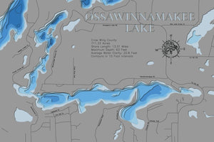 3d Depth map of Ossawinnamakee Lake in Crow Wing County, MN