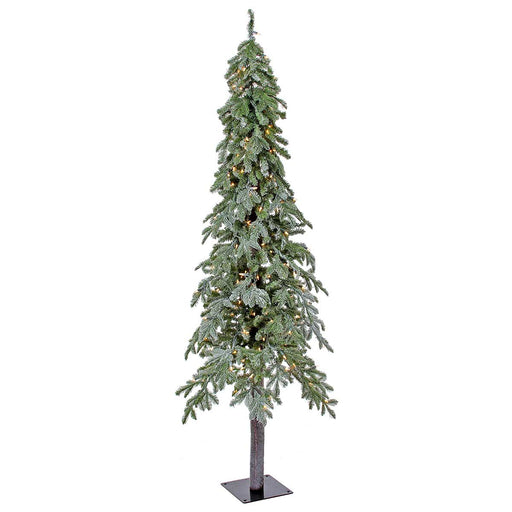 Alpine Frost 6' Pre-Lit Permanent Christmas Tree (200 CL) by Regency Trees - 31L